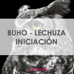 BUHO - LECHUZA INICIACIÓN