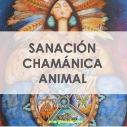 ANIMAL PATH - CAMINO DE SANACIÓN CHAMÁNICA ANIMAL