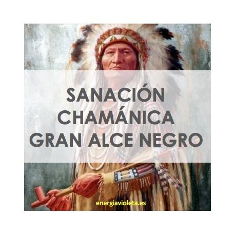 SANACIÓN CHAMÁNICA DEL GRAN ALCE NEGRO - BLACK ELK