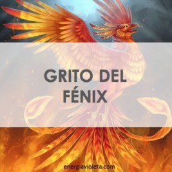 GRITO DEL FÉNIX