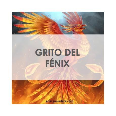 LLORO DEL FÉNIX