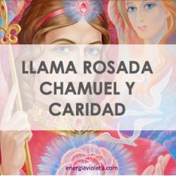LLAMA ROSADA CHAMUEL Y CARIDAD - LLAMA TRINA