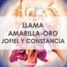 LLAMA AMARILLA-ORO JOFIEL Y CONSTANCIA - LLAMA TRINA