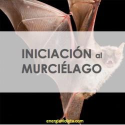 MEDICINA DEL MURCIÉLAGO - INICIACIÓN