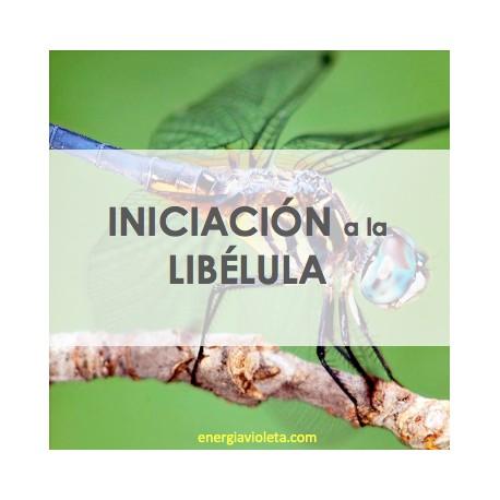 MEDICINA DE LA LIBÉLULA - INICIACIÓN