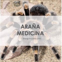 MEDICINA DE LA ARAÑA - INICIACIÓN