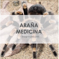 MEDICINA DE LA ARAÑA