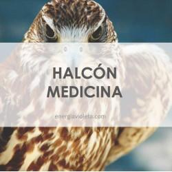 HALCÓN MEDICINA - INICIACIÓN