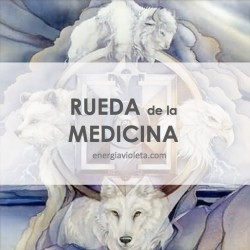 RUEDA DE LA MEDICINA - ACTIVACIÓN