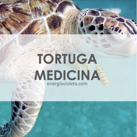MEDICINA DE LA TORTUGA - INICIACIÓN