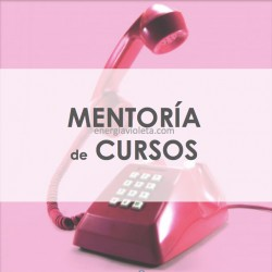 MENTORÍA DE CURSOS Y CLASES PARTICULARES