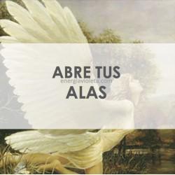 ABRE TUS ALAS - Ángeles