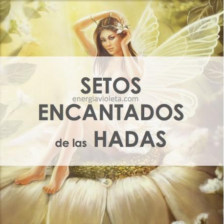 SETOS DE HADAS ENCANTADOS