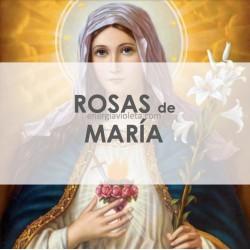 SANACIÓN CON LAS ROSAS DE MARÍA
