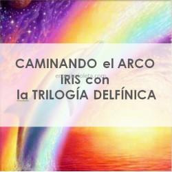 CAMINANDO EL ARCO-IRIS CON LA TRILOGÍA DELFÍNICA - DELFINES, CETÁCEOS Y BALLENAS