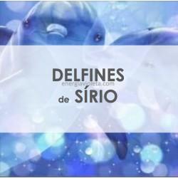 DELFINES DE SÍRIO