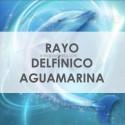 RAYO DELFÍNICO AGUAMARINA