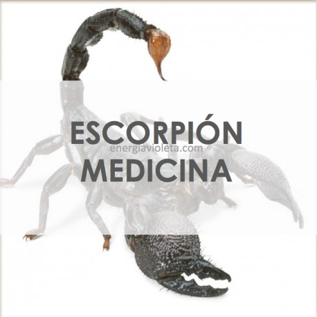 ESCORPIÓN MEDICINA